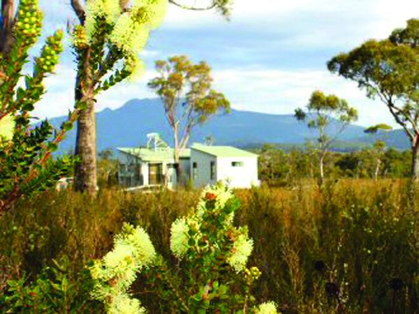 Buttongrass Retreat